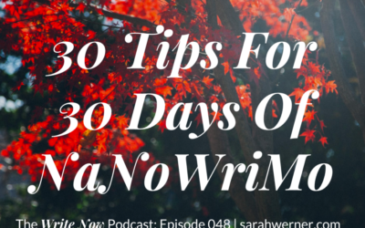 30 Tips for 30 Days of NaNoWriMo – WN 048
